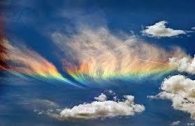 Shin Rainbow